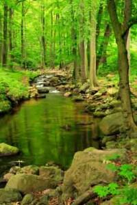 landscape-photography-tips